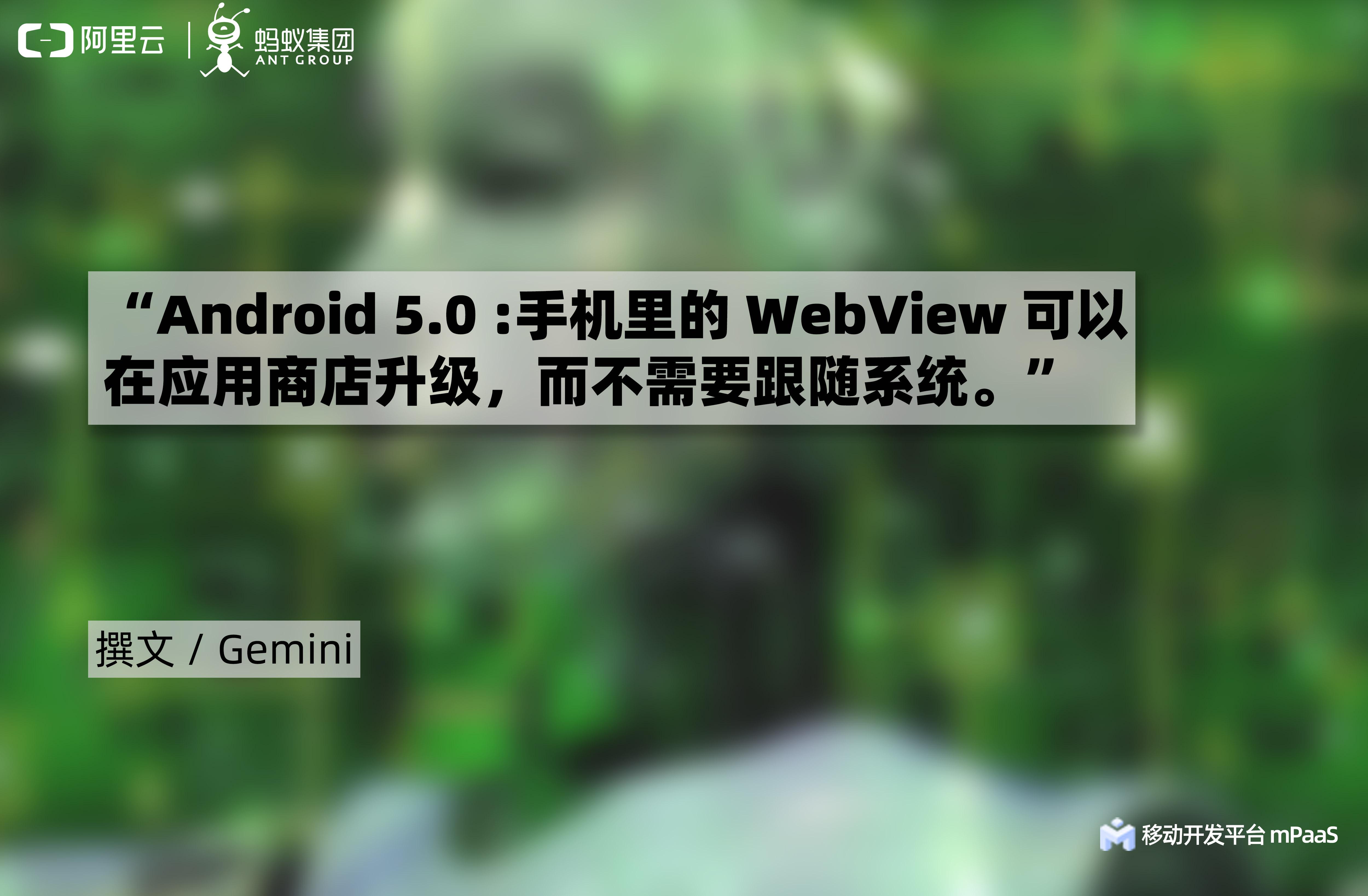 Webview.apk —— Google 官方的私有插件化方案1