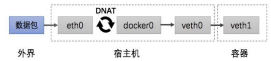 docker-数据卷与网络3